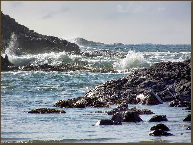 ocean1lrg