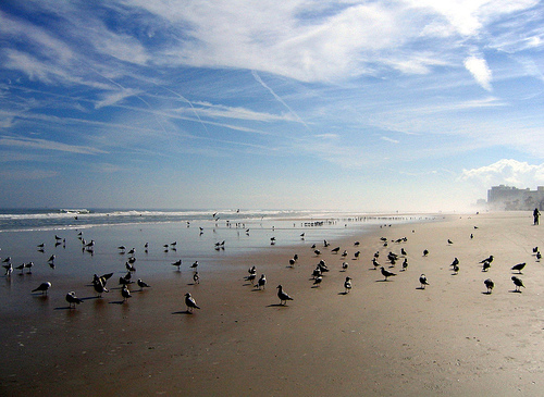 Daytona_beach_2