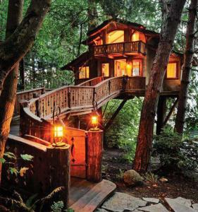 Unusual-But-Interesting-Tree-Houses-1