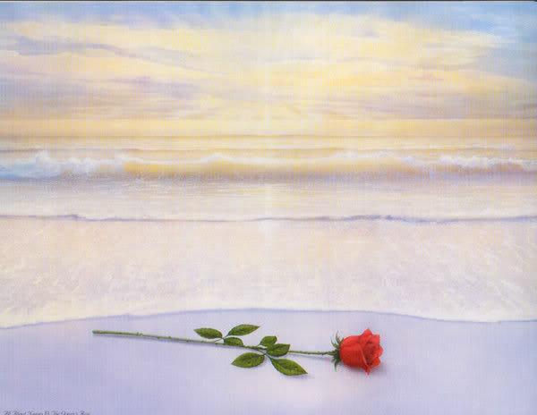 oceans_rose