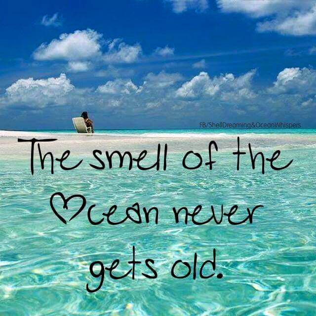 smell of the ocean