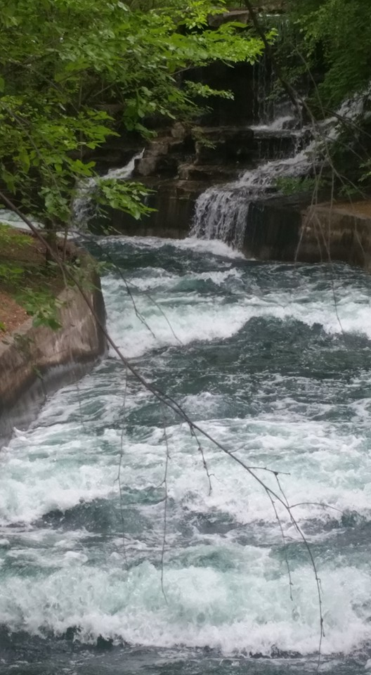 waterfall at adventureland