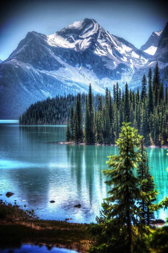 jasper-national-park-alberta-canada