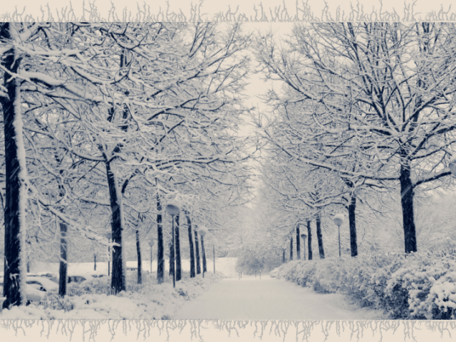 Winter_Wonderland_Wallpaper_by_jennyriot