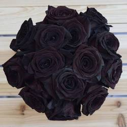 another pic of black roses