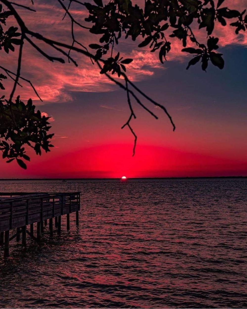 rose red sunset.jpg